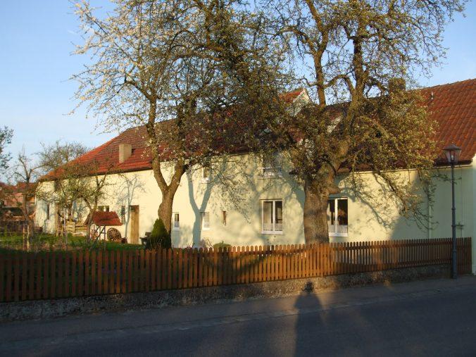 Chronik des Gartens - Alter Baumbestand