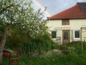 Regenbogen am Teich