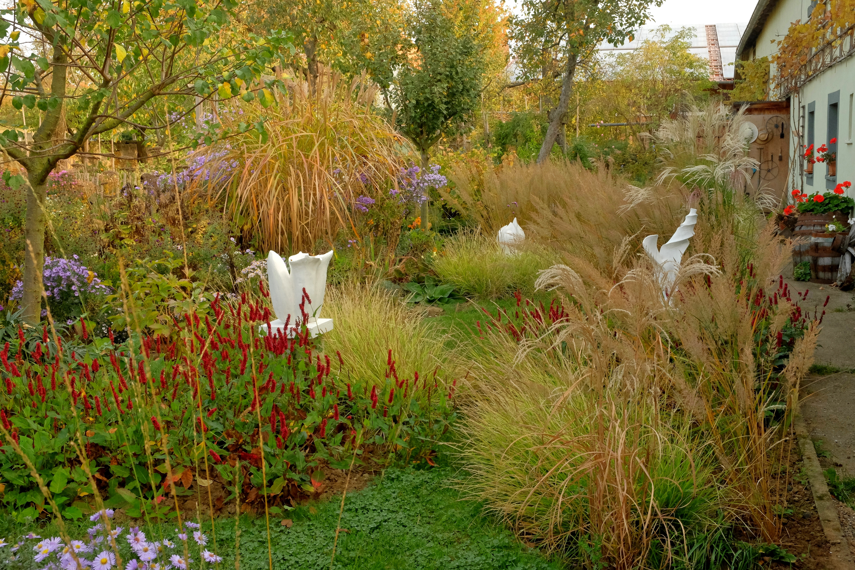 Ein Garten im Wandel